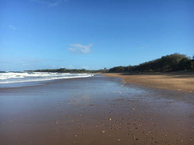 mon-repos-beach-bargara-turtle-season-centre