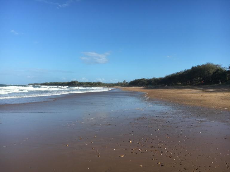 mon-repos-beach-bargara-turtle-season-centre