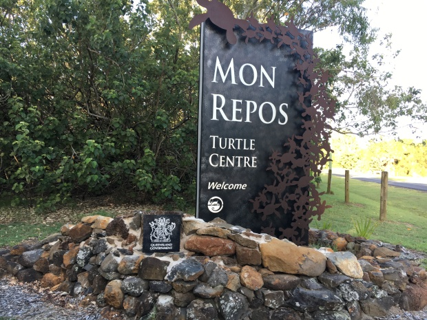 mon-repos-turtle-beach-bargara-bundaberg