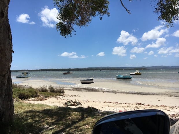 tin can bay low tide