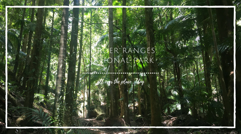 border-ranges-national-park-blog-bushwalking