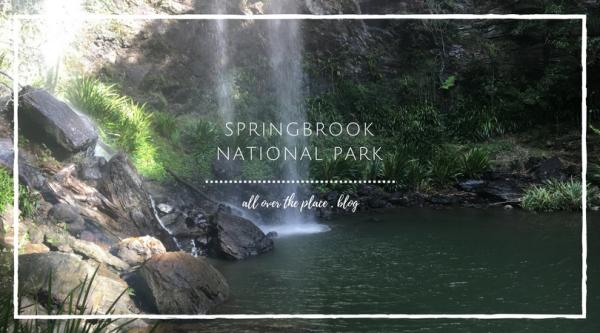 springbrook-national-park-warrie-circuit-waterfalls