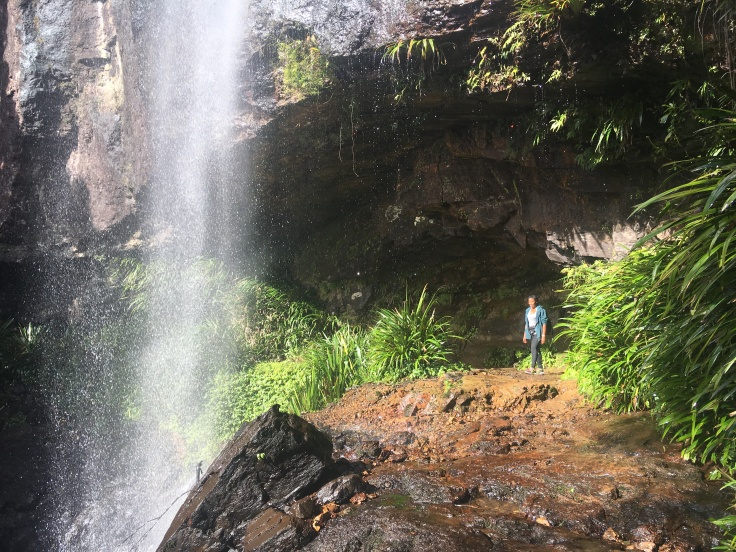 springbrook-national-park-rainbow-falls