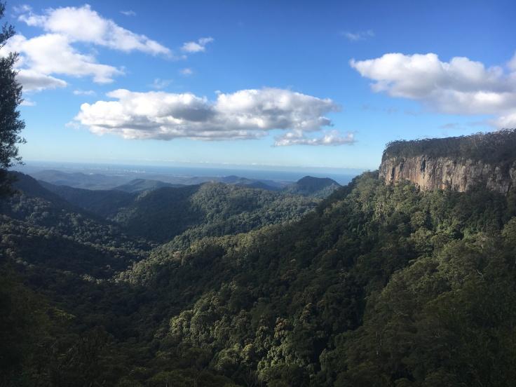 springbrook-national-park-canyon-lookout
