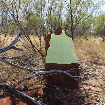 Decorated Termite Mound - Yellow shirt